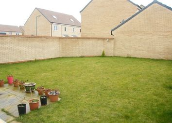 Thumbnail 4 bed property to rent in Jupiter Avenue, Peterborough