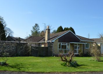 Thumbnail 4 bedroom detached bungalow for sale in St. Johns Close, Donhead St. Mary, Shaftesbury