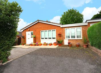 Thumbnail 3 bed bungalow for sale in Vownog Newydd, Sychdyn, Mold