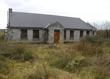 Thumbnail 4 bed detached house for sale in Dromelihy, Creegh, Co. Clare