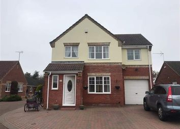 Thumbnail 4 bedroom detached house to rent in El Alamein Way, Bradwell, Great Yarmouth