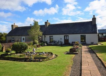 Thumbnail 2 bed semi-detached bungalow for sale in 1 Red Houses, Ackergill