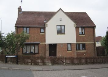 Thumbnail 4 bed detached house to rent in Chestnut Close, Brandon
