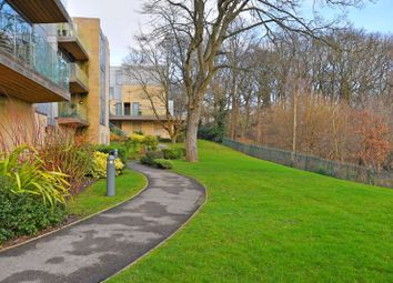 Bluebell House, Riverdale Road, Endcliffe Park, Sheffield S10
