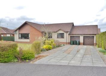 Thumbnail 3 bed detached bungalow to rent in Thompson Place, Kinross, Perth And Kinross