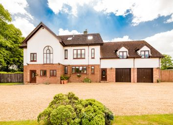 Thumbnail 6 bed detached house for sale in West End, Wilburton, Ely