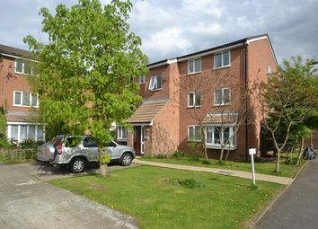 Thumbnail 2 bed flat to rent in Silver Birch Close, London