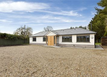 Thumbnail 3 bed detached bungalow to rent in Tarbay Lane, Oakley Green, Windsor, Berkshire