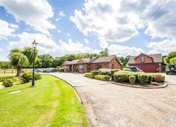 Thumbnail 5 bed detached bungalow for sale in Cooling Common, Cliffe, Kent