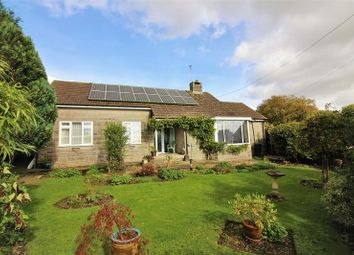 Thumbnail 3 bed detached bungalow for sale in Forton, Chard