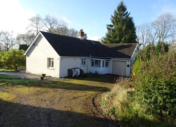 Thumbnail 3 bed bungalow for sale in Sunny Bank, Clayhidon, Cullompton, Devon