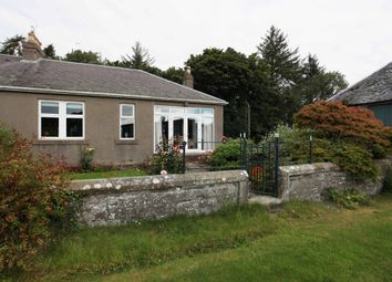 Thumbnail 2 bed semi-detached bungalow for sale in Duntrune, Angus