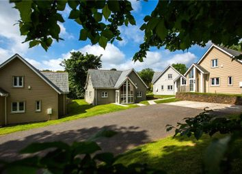 Trewhiddle, St. Austell, Cornwall PL26. 4 bed detached house for sale