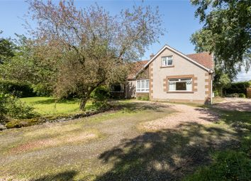 Thumbnail 5 bed detached house for sale in The Shambles, Myreriggs Road, Coupar Angus, Blairgowrie