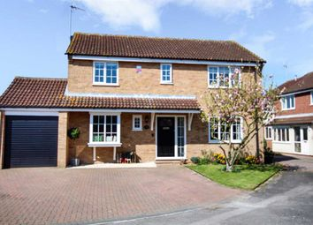 Thumbnail 4 bed detached house for sale in Magwitch Close, Broomfield, Chelmsford