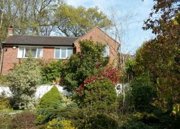 Thumbnail 4 bed detached house to rent in Shadyhanger, Godalming