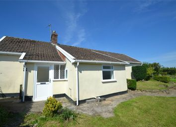 Thumbnail 2 bed detached bungalow to rent in Umberleigh