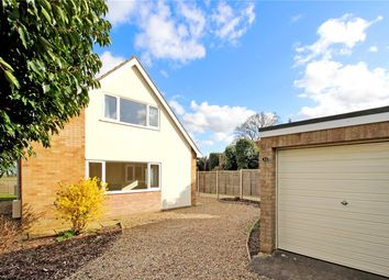 Thumbnail 3 bed detached bungalow to rent in Bligh Close, Framingham Earl, Norwich, Norfolk