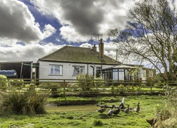 Thumbnail 3 bed bungalow for sale in Dubheads Of Madderty, Crieff, Perth, Perthshire