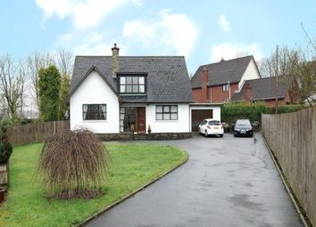Thumbnail 4 bedroom detached house for sale in Belfast Road, Newtownards