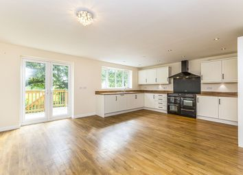 Thumbnail 4 bed terraced house to rent in Howden Green, Howden Le Wear, Crook