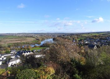 Thumbnail 2 bed cottage for sale in Bryn Teifi, Penrhiw, St Dogmaels, Pembrokeshire