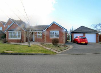 Thumbnail 2 bed detached bungalow for sale in Llys Y Graig, Bryn Y Baal, Flintshire