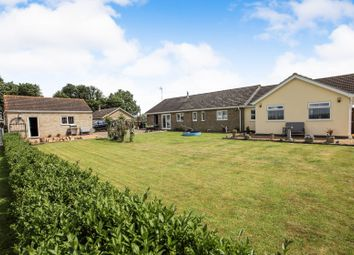 Thumbnail 3 bed detached bungalow for sale in Willow Drove, Borough Fen, Peterborough