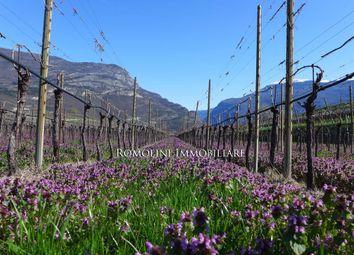 Thumbnail Land for sale in Trento, Trentino-Alto Adige, Italy