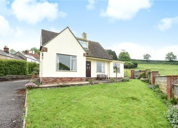 Thumbnail 3 bed detached bungalow for sale in Kingsdon, Colyton, Devon