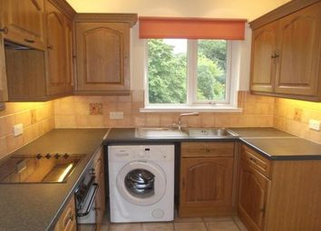 Thumbnail 2 bed flat to rent in Ladysmith Road, Exeter