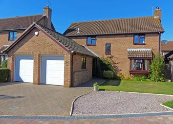 Thumbnail 4 bedroom detached house for sale in Priors Gate, Peterborough