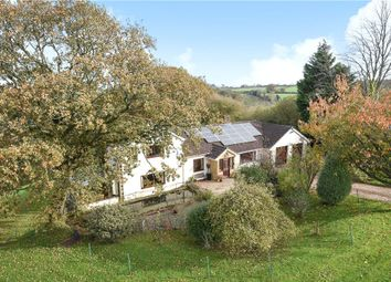 Thumbnail 3 bed detached house for sale in School House, Thorncombe, Dorset