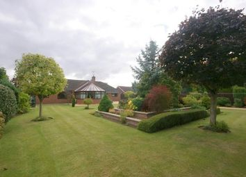 Thumbnail 3 bed detached bungalow for sale in Delph Fields, Long Sutton, Spalding