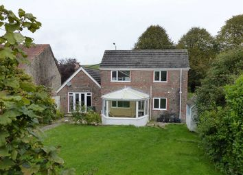 Thumbnail 3 bed detached house for sale in Winterbourne Abbas, Dorchester, Dorset