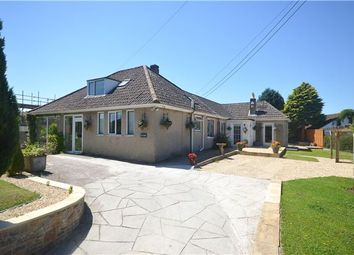 Thumbnail 4 bed detached bungalow for sale in Binegar, Radstock, Somerset
