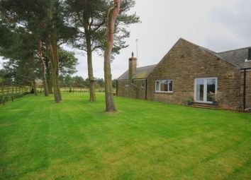 Thumbnail 4 bedroom detached bungalow for sale in Felton, Morpeth