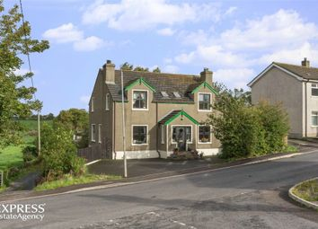 Thumbnail 4 bed detached house for sale in St Patricks Road, Downpatrick, County Down