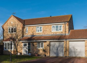 Thumbnail 5 bedroom detached house for sale in Halesowen Place, Eye, Peterborough