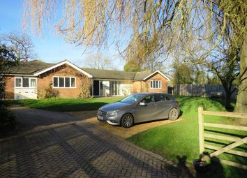 Thumbnail 4 bed property to rent in Ginns Road, Stocking Pelham, Buntingford