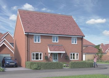 Thumbnail 4 bed detached house for sale in The Elder At St Luke's Park, Runwell Road, Runwell, Essex