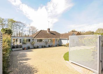 Thumbnail 4 bed detached bungalow to rent in Trotsworth Avenue, Virginia Water