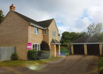 Thumbnail 5 bedroom detached house to rent in Boyden Court, Fordham, Ely