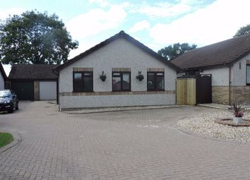 Thumbnail 3 bedroom detached bungalow for sale in Llwyncelyn, Capel Hendre, Ammanford