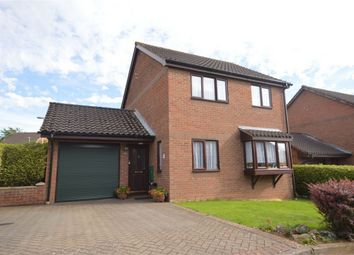 Thumbnail 4 bedroom detached house for sale in Layer Close, Chapel Break, Norwich