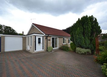 Thumbnail 3 bed detached bungalow for sale in Brundall, Norwich