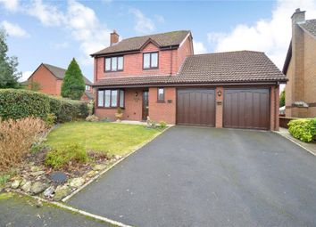 Thumbnail 4 bed detached house for sale in Lower Fern Road, Newton Abbot, Devon
