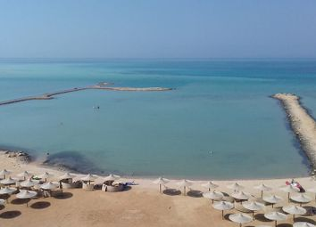 Thumbnail 4 bed apartment for sale in Turtles Studio, Turtles Beach, Hurghada, Egypt