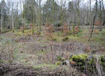 Thumbnail Land for sale in Abington, Biggar