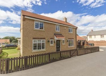 Thumbnail 4 bed detached house for sale in Primrose Way, Stainton